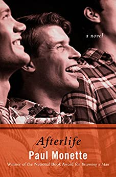 Afterlife: A Novel by [Paul Monette]