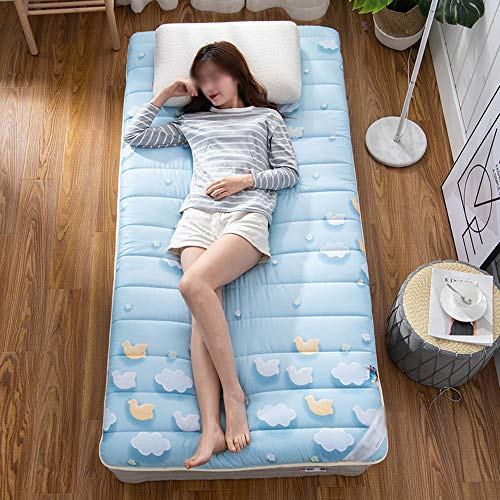 ZXGQF Tatami Mattress, Foldable Futon Tatami mattress Soft thick Japanese Student dormitory mattress Pad (E,90 * 190cm)