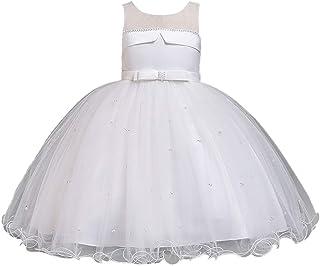 女の子 刺繍ビーズ ドレス チュール チュチュ ガウン ベビーワンピース 結婚式 誕生日祝い 記念撮影 Zhhlaixing