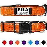 Taglory Hundehalsband mit Name, mit Edelstahl Erkennungsmarke Personalisiert, Oranges Hundehalsband Gepolstert für Kleine Mittlere Große Hunde, Verstellbar und Feflektierend