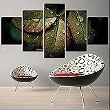JLFFYJ Cuadro en Lienzo-Impresiones enmarcadas Set Lienzo Arte de la Pared Abstracción Hojas Verdes y Lluvia Clima Gotas de Agua 5 Piezas