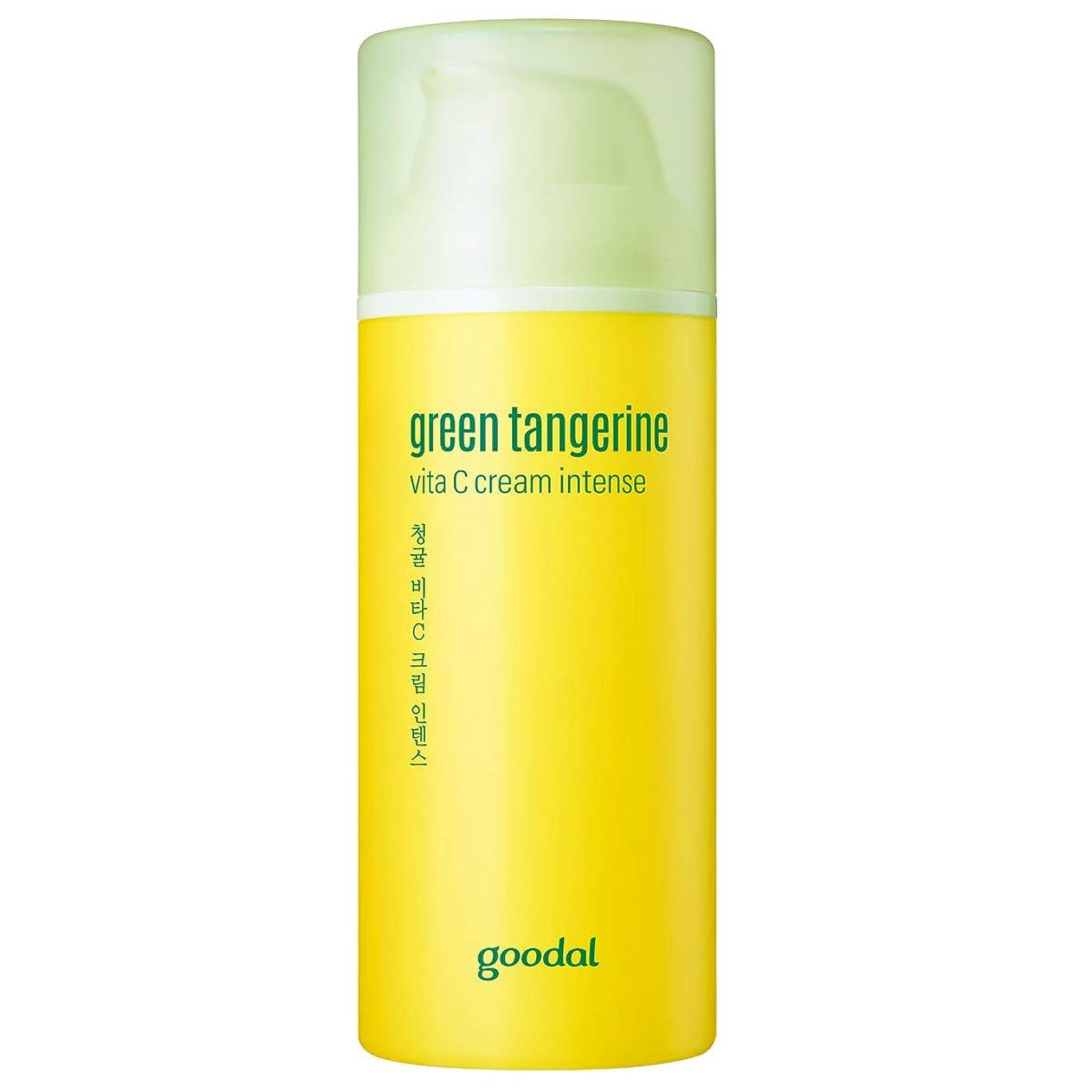 議会安心猛烈なGoodal チョンギュルビタCクリームインテンスセットgreen tangeriene vita C cream intense set[並行輸入品]