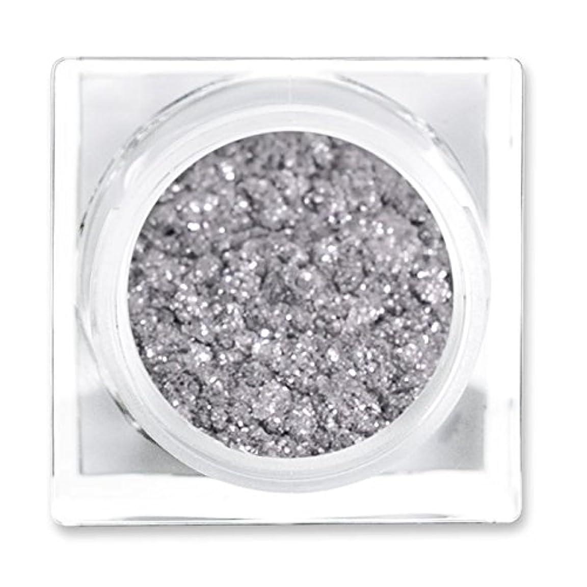 終わった矛盾ウルルリットコスメティックス リットメタルズ Magnetic Silver