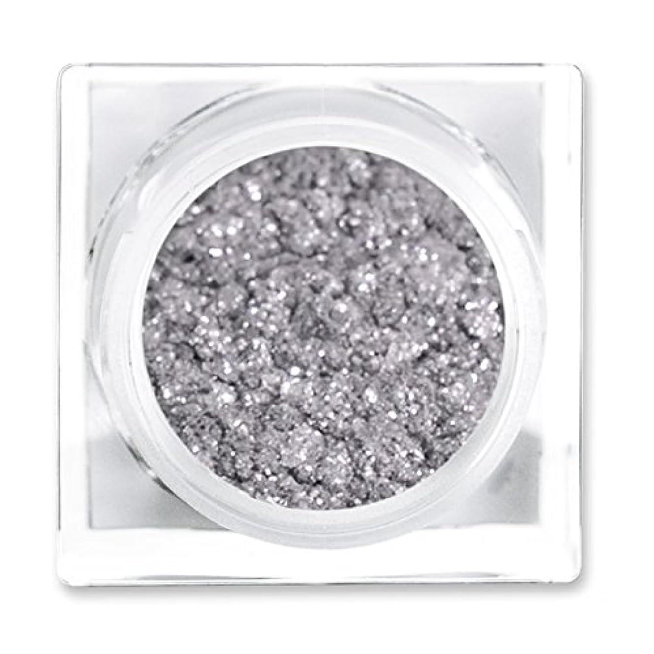 過半数突然ディレイリットコスメティックス リットメタルズ Magnetic Silver