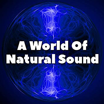 A World Of Natural Sound