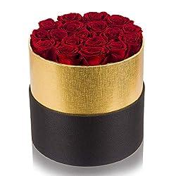 Rote echte Rosen in Box, handgefertigt, konservierte Rosen, die 2 bis 3 Jahre halten, langlebige Rose Geschenk für Frauen, Valentinstag, Muttertag, Geburtstag, Weihnachten, Jahrestag (runde Box, groß)
