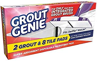 Best the grout genie Reviews