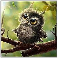 大人のために刻印されたクロスステッチキット初心者-動物のオウムフクロウの鳥-11Ct初心者の子供または大人のための事前に印刷されたクロスステッチスターターパターン刺繡針ポイントキット40X50Cm