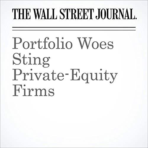 Portfolio Woes Sting Private-Equity Firms audiobook cover art