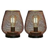 Heritan Lámpara de mesa de jaula de metal, lámpara de acento inalámbrico con bombilla LED, lámparas de batería para bodas, jardín (forma de gg)
