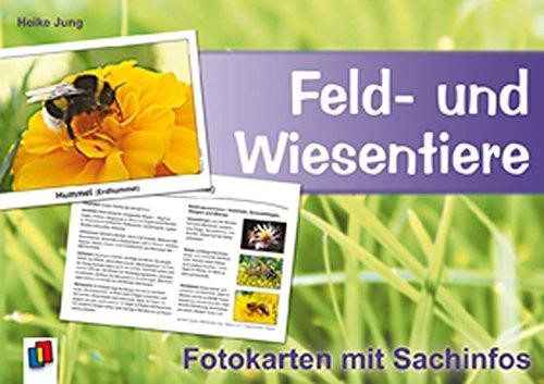 Feld- und Wiesentiere - Fotokarten mit Sachinfos