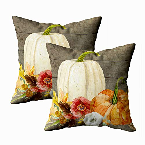 Shorping Sofa Pillow, Zippered Pillowcases 20X20Inch 2 Pack Throw Pillow Covers Watercolor White Pumpkin red Poppy Fall Leaf Wood for Home Sofa