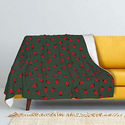 manta ladybug fabricante