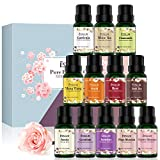 Aroma & More Aromatherapy Diffusers - Best Reviews Guide
