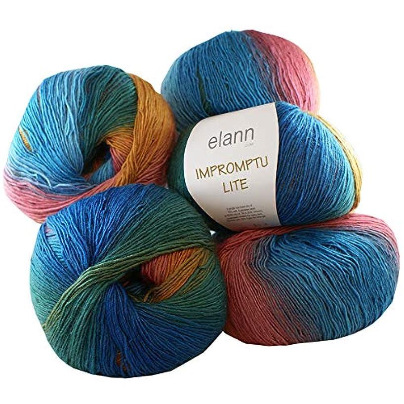 elann Impromptu Lite Yarn   5 Ball Bag   503 Provence