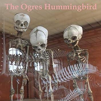 The Ogres Hummingbird
