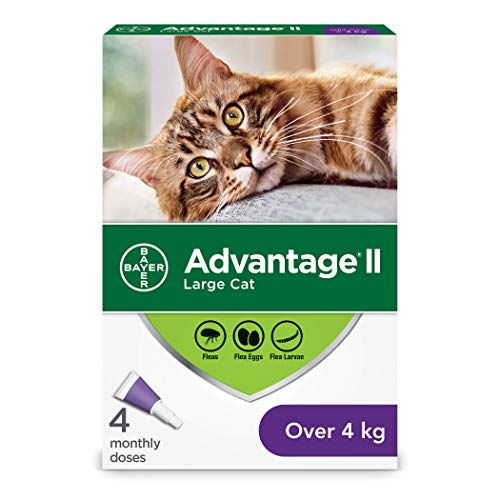Advantage II Flea Treatment for Large Cats weighing over 4 kg (over 9 lbs.) Package may vary