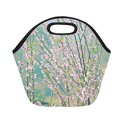 Isolierte Neopren-Lunchpaket-Kunst-Niederlassungs-Rosa-Blüten-Tapete-große wiederverwendbare thermische starke Mittagessen-Taschen-Taschen für Lunchboxen für im Freien arbeiten, Büro, Schule
