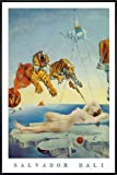 Salvador Dali Poster Dream Caused by A Bee Flight. (93x62