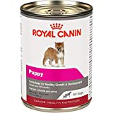 Royal Canin Canine Health Nutrition Puppy Canned Dog Food, 13.5 oz Can (Pack of 12)