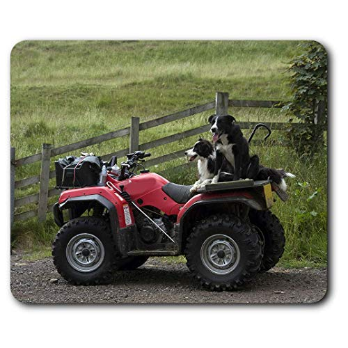 Muismat comfortabel – Border Collie Sheepdog Quad Farm Bike voor computer en laptop, kantoor, geschenk, antislip onderkant