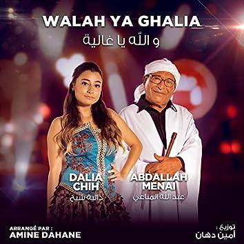 Walah Ya Ghalia (Coke Studio Algérie)