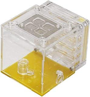 [RADISSY] アリ 飼育 観察 キット アリの巣 研究 理科 夏休み 自由研究 課題
