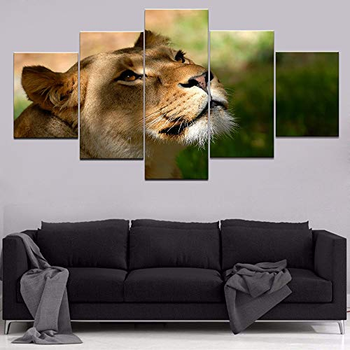 DGGDVP Dieren leeuwen figuur HD print dier schilderijen muur kunst huis decoratie moderne wand decoratie canvas schilderijen canvas ruimte 5 stuks kunstwerk 40x60cmx2 40x80cmx2 40x100cmx1 Geen frame.