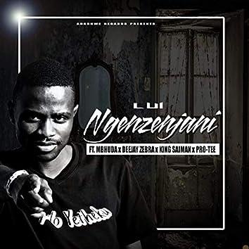 Ngenzenjani (feat. Mbhuda, Dj MainMAN, Deejay Zebra, King Saiman & Pro-Tee)