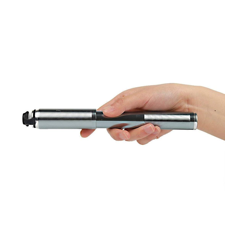 めったにアンプ疎外高圧×超軽量 持ち運びやすい携帯ポンプ アルミ 超軽量ミニバイクハイト圧力ポンプPresta Schrader 160 Psi(延長ヘッド付き) (色 : 銀, サイズ : 21cm)