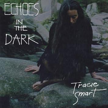 Echos in the Dark