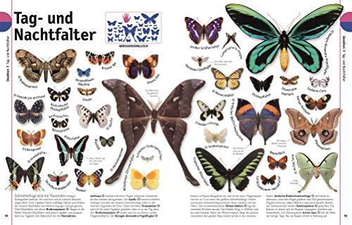 Tiere: Die Vielfalt der Tierwelt in 1.500 Bildern - 5
