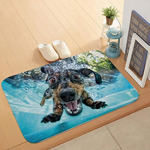 Cartoon stijl mooie hond schilderij honden zwemmen print tapijten antislip vloermat buiten tapijten dieren voordeur matten-EEN_50 * 80