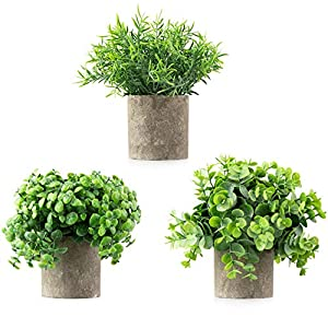 CASALUXE Potted Artificial Plants, Set of 3 Fake Eucalyptus, Boxwood and Rosemary, 2-Toned Plastic Faux Greenery, Mini Houseplants in Cement-Colored Paper Pulp Pots – Modern Farmhouse Decor, 7×8 inch