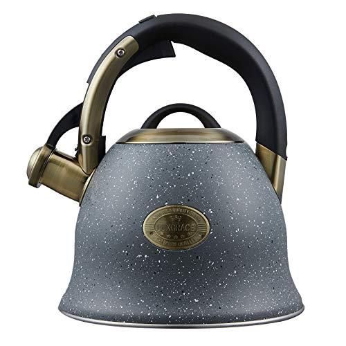 Tea Kettle,Whistling Stainless Steel Tea Kettle for Stovetop(Gray)