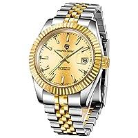 PAGANI DESIGN 新しいクラシックブラックダイヤル高級男性自動腕時計ステンレス鋼防水機械式時計 (B)