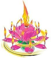 Höhe 10 cm Mit 14 brennenden Kerzen Lieferumfang 1 Kerzen in die Farbe rosa . BAM-F1-0316 Kann zur geringen Rauchentwicklung kommen .