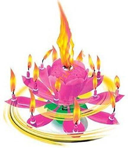 Musik Blumenkerzen Alles Gute zum Geburtstag mit Fontäne und Musik Kerzen Tortendeko Hochzeitsfontäne 14 Kerzen mit der bekannten Melodie Happy Birthday (Rosa 14 Kerzen)