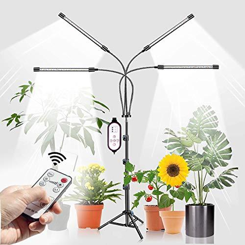 LILIAN -  Pflanzenlampe LED