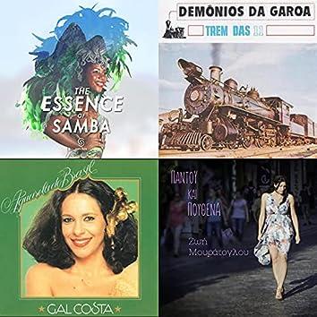 A Essencia do Samba