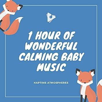 1 Hour of Wonderful Calming Baby Music