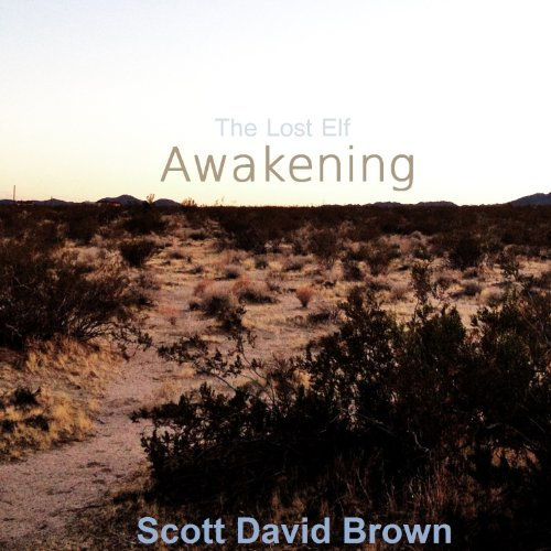 Awakening audiobook cover art