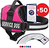 Service Dog Vest With Hook and Loop Straps and Handle - Harness is Available in 8 Sizes From XXXS to XXL - Service Dog Harness Features Reflective Patch and Comfortable Mesh Design (Pink, Small)