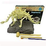 JCT Kit di Scavi di Dinosauri Dinosaur Scavo Giocattoli Fossili di Scheletro Dino Modello di Stegosaurus Realistico Giocattoli Educativi Regalo per Bambini Ragazzi Ragazze (Stegosaurus)