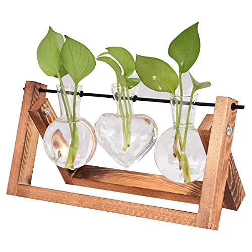 DEDC 2 glödlampa 1 hjärtvas skrivbord växt terrarium glasplanterare med retro massivt trästativ och metall svängbar hållare hydroponik växter heminredning (2 glödlampa x 1 hjärta)
