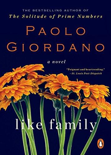 Like Family: A Novel