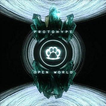 Open World LP