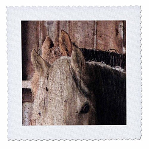 3dRose qs_108276_1 Horses in The Barn on a Rainy Day by Angelandspot-Quilt Square, 10 by 10-Inch