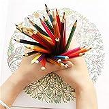 Reeamy-Home Lapices de Colores Lápices de Colores Pintura Suministros Dibujo de bocetos Lápiz Lápiz de Color Conjunto Papel de la Escuela Oficina (Color : Multi-Colored, Size : 36 Colors)