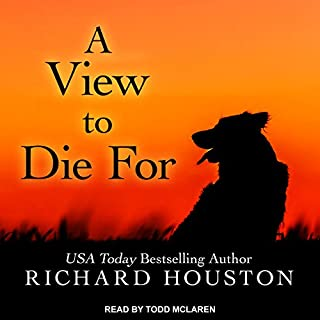 A View to Die For audiobook cover art